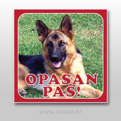 opasanpas1