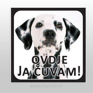 Tablica, pločica, opasan pas, oštar pas